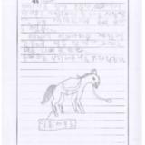 [9세 초등학생] 승마
